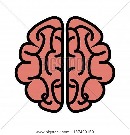 Human brain isolated flat icon, vector illustration graphic design.