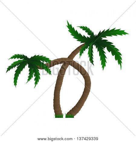 Palm trees isolated on white. Two coconut palm.  Vector illustration