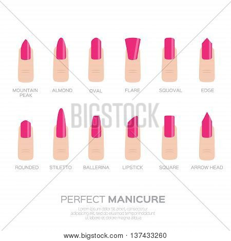 Different pink nail shapes. Woman fingers. Fingernails fashion trends. Vector design illustration