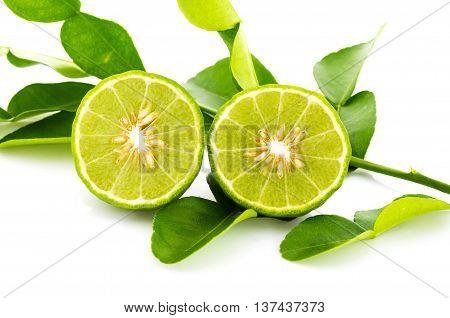 Kaffir Lime Fresh Isolated.