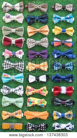 Set of homemade bow ties located on screws against background of green tissue.