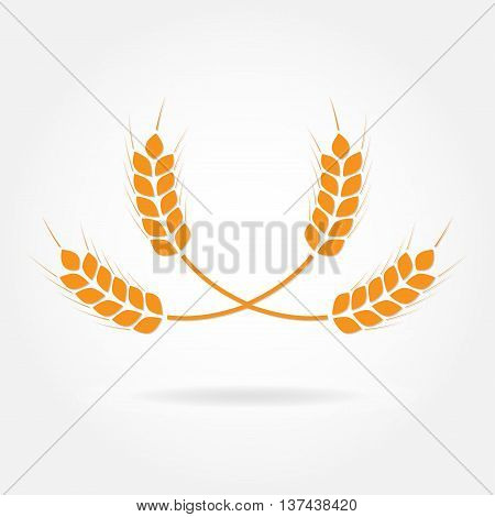 Wheat ears or rice icon. Crop symbol. Design element for bread packaging or beer label.