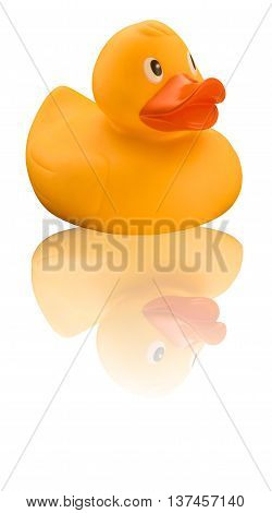 Yellow rubber duck with orange beak and reflective background