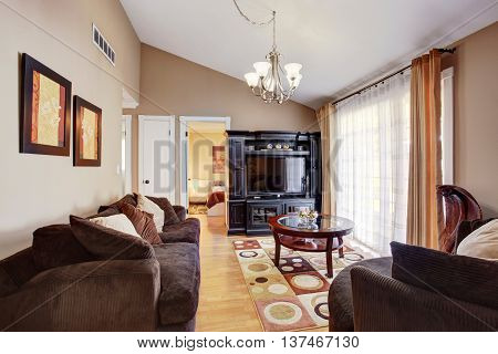 Bright living room interior with brown sofa colorful rug black cabinet and vaulted ceiling