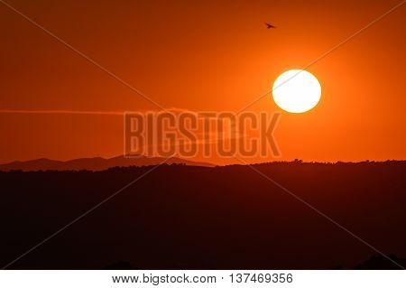 Toskana hills sundown with orange colored sky