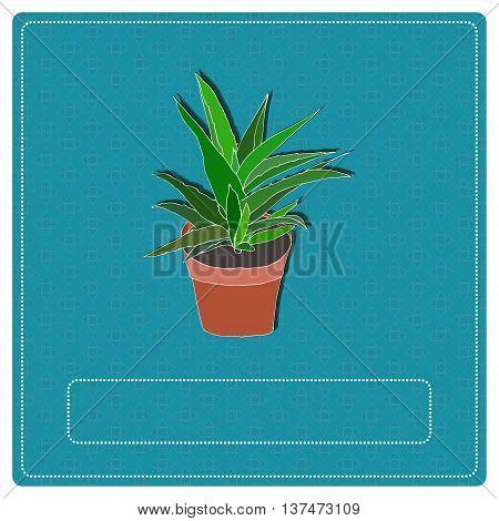 Hand drawn aloe vera plant in a flowerpot. Vector Illustration.