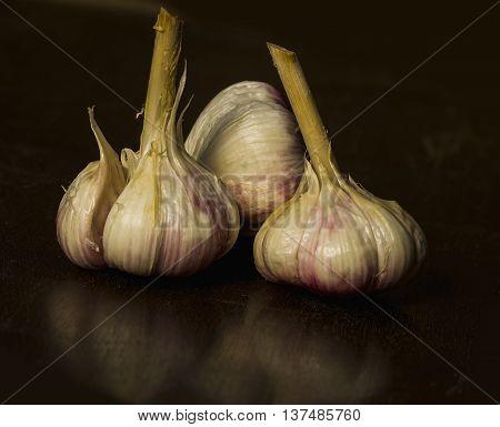 young garlic on a dark background - three heads