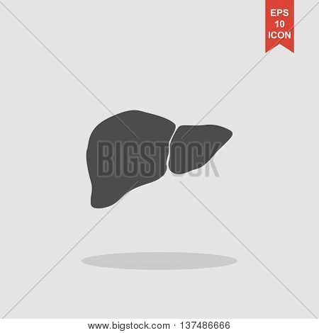 Vector Flat Liver Icon