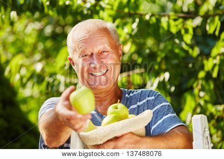 Senior farmer feeling joy because of the harvest season in autum