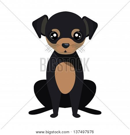 Puppy dog face cartoon, vector illustration graphic design.