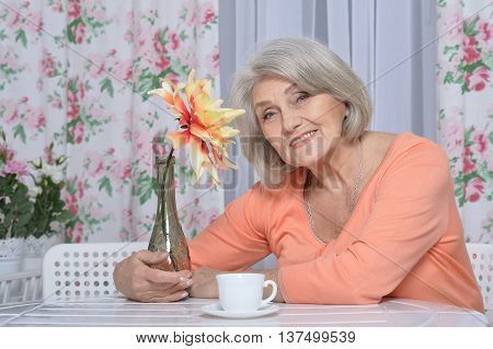 Portrait of a mature couple drinking tea