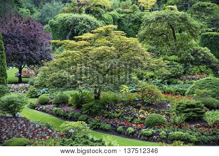 Butchart Gardens In Victouria B C