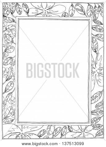 Picture Frame Plumeria Applied Arts It's flower and leave nature frame pencil sketch design black and white color.