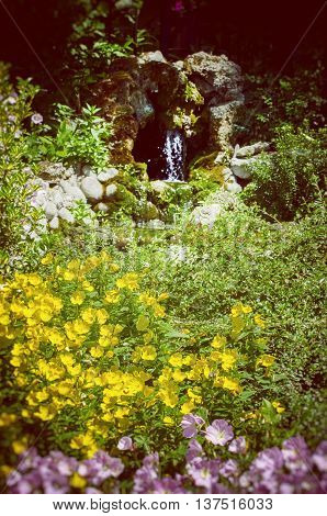 Photo of the Garden With Flowers and water