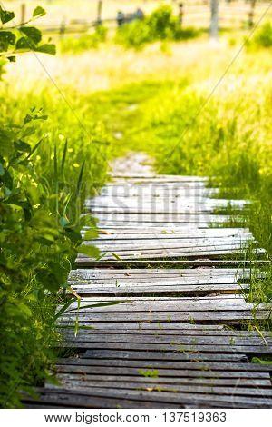 Green Meadow Footpath