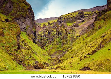 Canyon Pakgil -  green grass and moss on freakish rocks. The summer blossoming Iceland