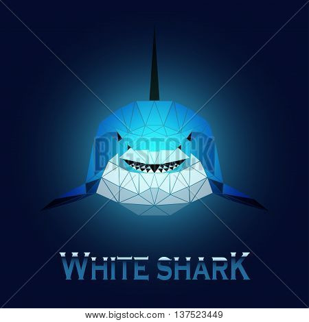 vector illustration abstract portrait of a white shark