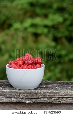 Fresh strawberries in a white bowl, on a deck railing with greenery in the background