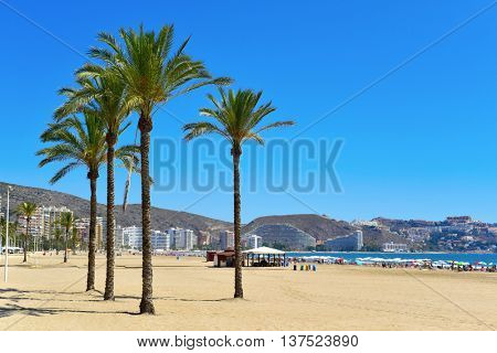 a panoramic view of the San Antonio Beach in Cullera, Spain, in the Mediterranean sea