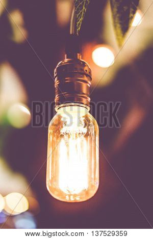 Vintage Filter : Vintage Lightbulb Hanging On Tree