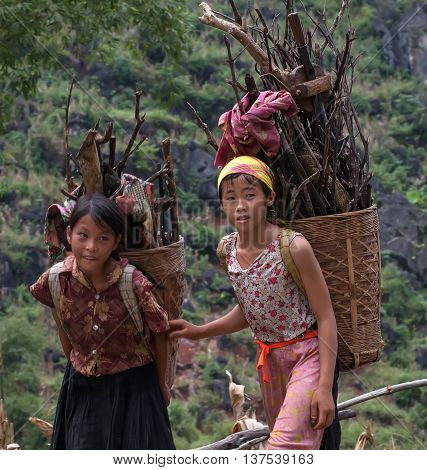 LAI CHAU, VIETNAM, May 15, 2016 Children's group, Lai Chau highland, collecting firewood.