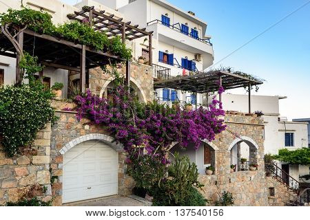 Traditional Greek stone house with  purple bougainvillea flowers