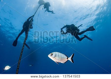 Divers Under Boat For Deco Time In The Blue