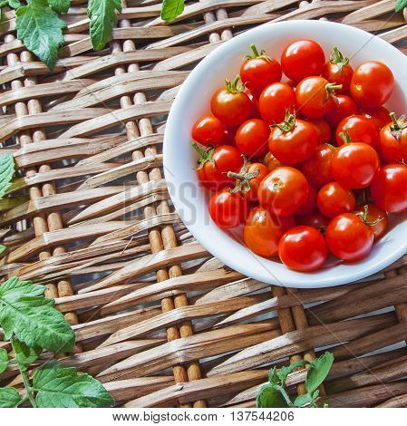 Tomatoes in bowl, ripe and red harvest, on wicker picnic basket with tomato leaves - with text / copy space - square composition.