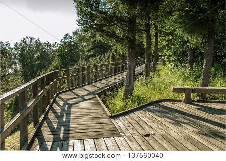 Wooden Trail Walk