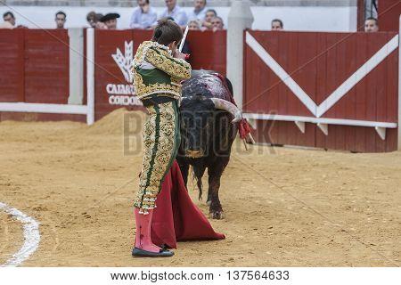 Pozoblanco Spain - September 23 2011: The Spanish Bullfighter Julian Lopez El Juli prepares to kill a bull with his sword inthe Bullring of Pozoblanco Spain