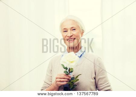 age, holidays and people concept - happy smiling senior woman with white rose flower at home