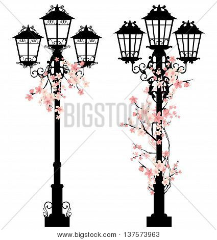 spring season street light vector decor with blooming tree branches