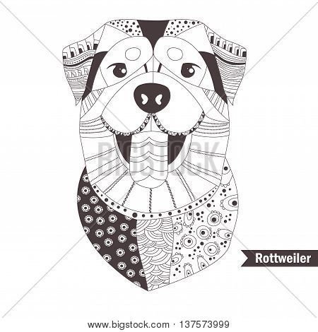 Rottweiler. Coloring book for adult, antistress coloring pages. Hand drawn vector isolated illustration on white background. Henna mehendi, tattoo sketch