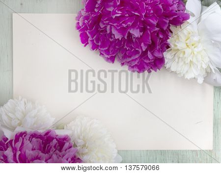 Pink and white peony against the rough wrapping paper. Peonies mockup