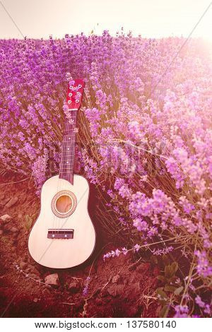 Classic small guitar laid on a lavender field row under the sunrise rays