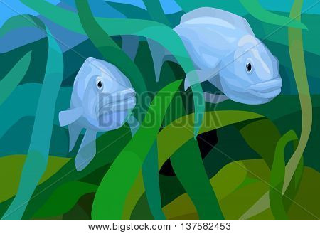 underwater scene with two fishes among seaweeds, vector