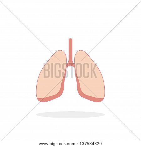 Lungs Icon In Flat Style With Shadow, White Background