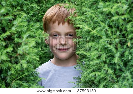 Close up portrait of a ginger smiling boy with freckles in the bushes