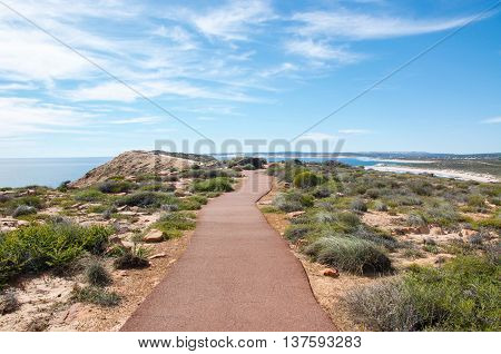 Hiking trail to the Red Bluff lookout overlooking the turquoise Indian Ocean with sandstone and native green plants under a blue sky on the coral coast in Kalbarri, Western Australia.