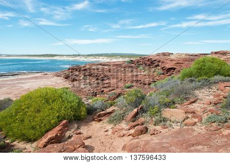 Sandstone and coastal plants line the Red Bluff beach with the turquoise Indian Ocean under a blue sky on the coral coast in Kalbarri, Western Australia.