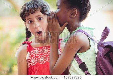 Girl telling a secret to her friend in a park