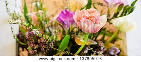 Flower wedding holiday decoration, beautiful pink roses peony blooming bouquet on black panorama