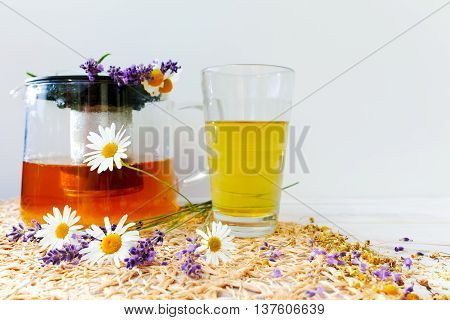 Healthy camomile and lavender herbal tea on white backgound