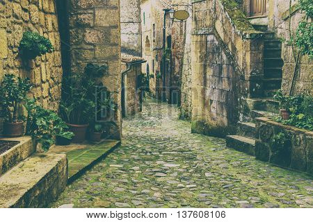 Narrow street of medieval tuff city Sorano with green plants and cobblestone, travel Italy vintage  background