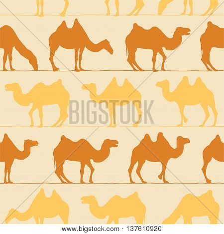 seamless vector pattern - camels. Desert flat background