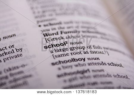 Close Up Of Words In A Dictionary