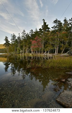 Fall in Acadia National Park Bar Harbor, Maine