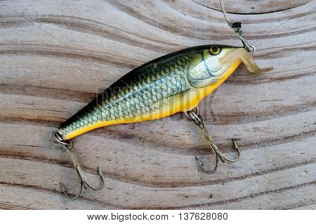 fake victims for fishing on wood background