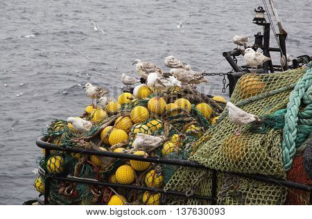 Fishing tackle with seagulls sitting on it
