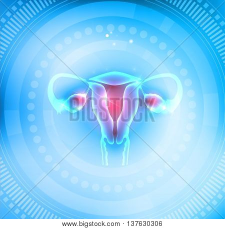 Female Uterus And Ovaries On A Light Blue Abstract Round Circle Background